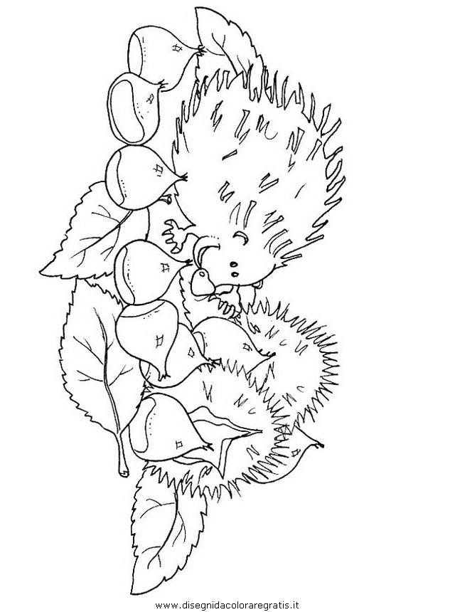 disegno castagne misti da colorare