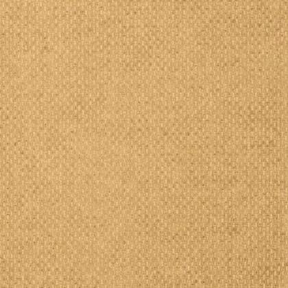 T14169