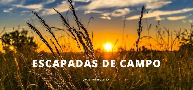 Escapadas de campo cerca de Rosario