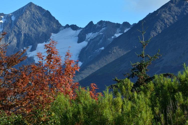 Circuitos turisticos de Tierra del Fuego
