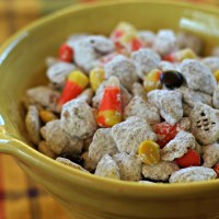 Fall Puppy Chow