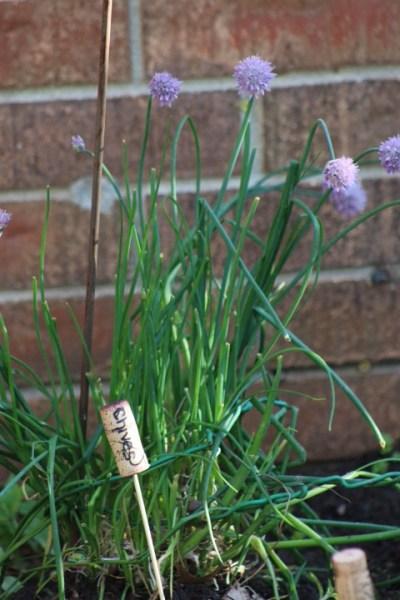Her garden markers