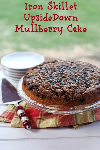 mulberry recipes