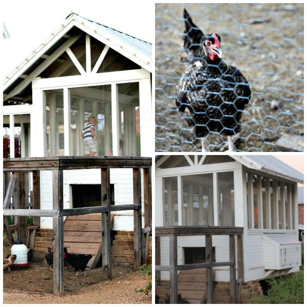chicken house Carlton Landing