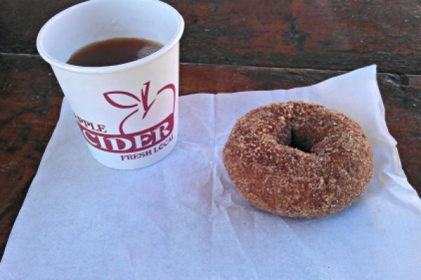 pumpkin donuts and cider