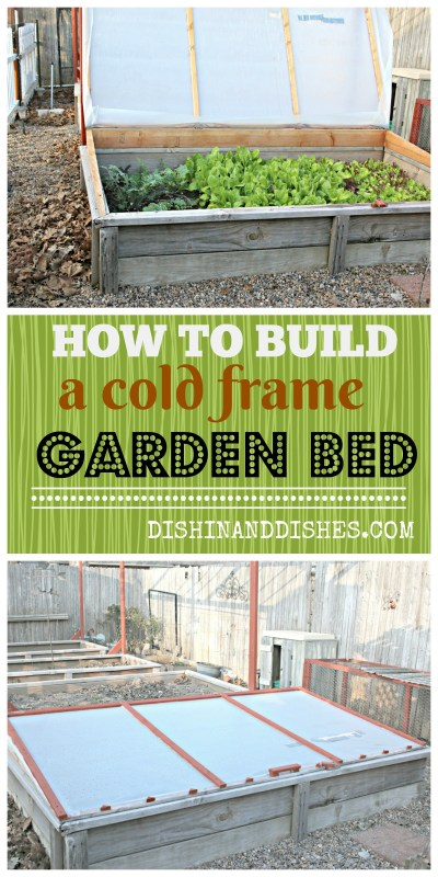 How to Build and Grow in a Cold Frame Garden Bed - Dishin & Dishes