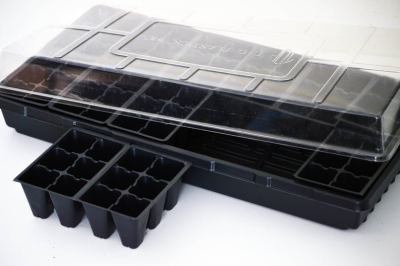 seed tray plugs greenhouse