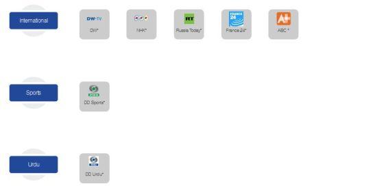 International Channels in Zing Digital 99