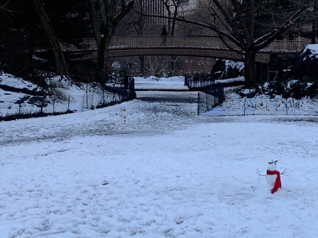中央公園雪人
