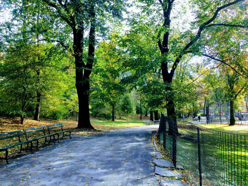中央公園 Central Park