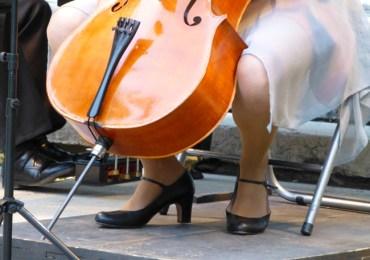 concerto salonmusik