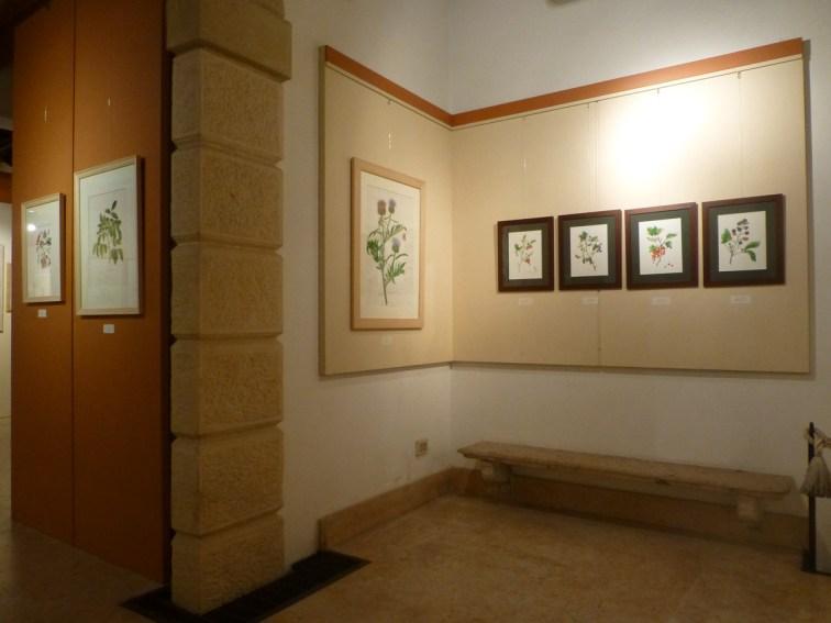 20121104-florapictapittura-botanica-contemporanea-verona