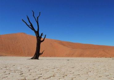 mostra fotografica sulla namibia alla biblioteca frinzi dell'università degli studi di verona