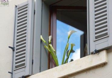 mazzo di calle in una finestra aperta in corte sgarzerie a verona