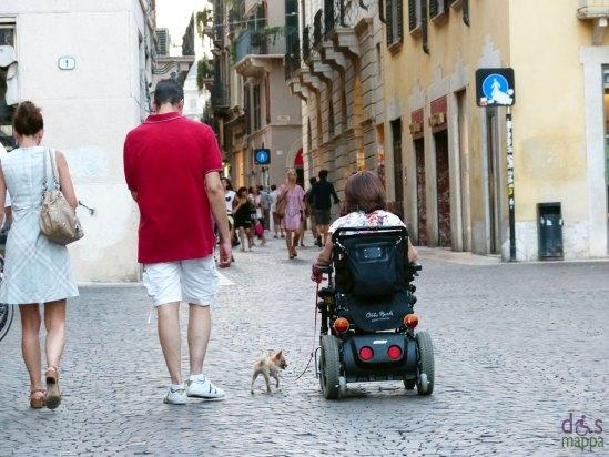 carrozzina-elettrica-disabile-cane-verona