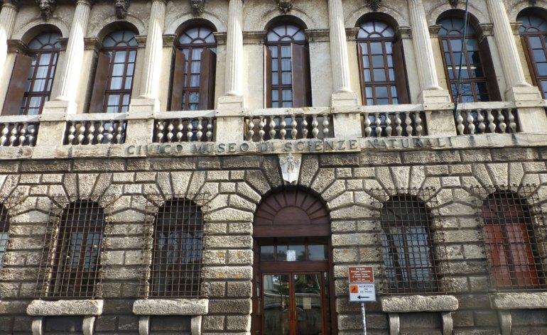 Una giornata dedicata alle famiglie in tutta Italia domenica 13 ottobre, a Verona al Museo di Storia Naturale, per le altre città si veda www.famigliealmuseo.it