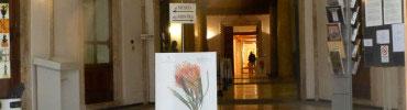museo-miniscalchi-erizzi