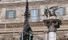 L'albero di Natale bruciato in Piazza delle Erbe