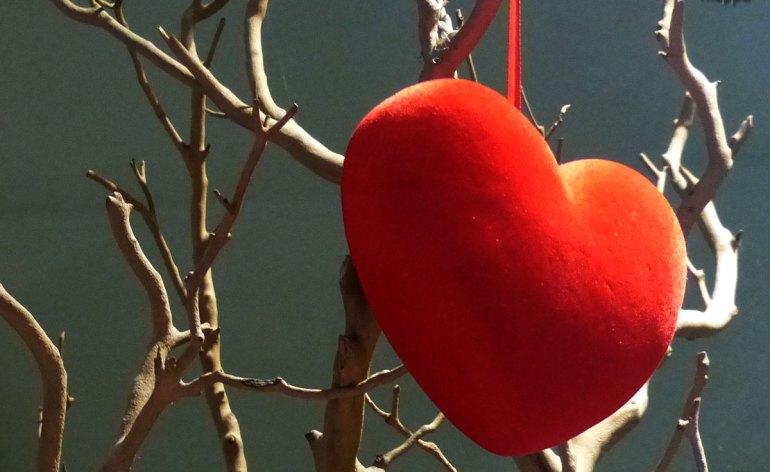 20140131 Composizione cuore San Valentino Verona