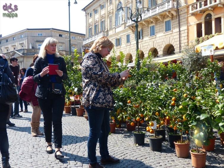 20140329 Verona in fiore Piazza Bra 271