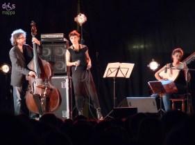 20140703 Musica Nuda Verona folk Valeggio 481