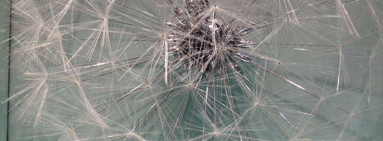 20140810 Soffione vetrina Louis Vuitton Verona