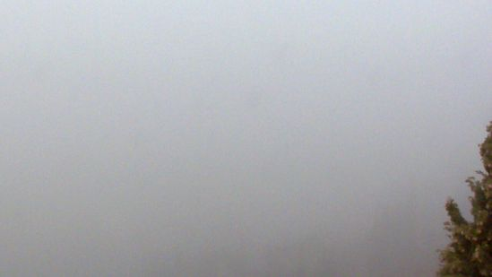 20150208  Verona scoperta webcam nebbia