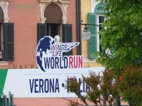 20150503 Wings for Life World Run Verona 2067