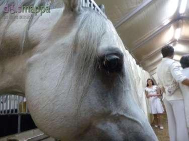20150625 Cavalli White teatro equestre dismappa 708