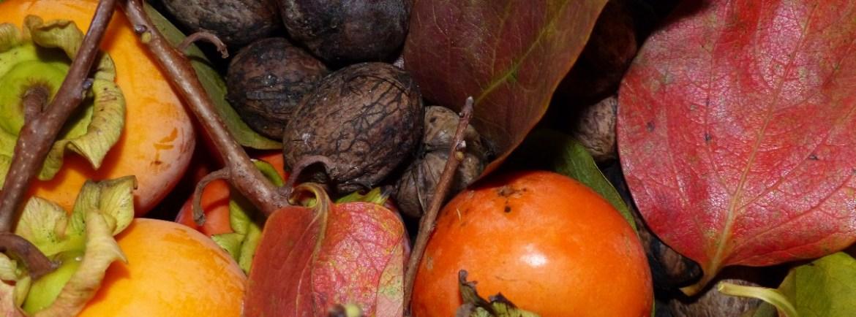 20151026 Caki noci autunno frutta dismappa
