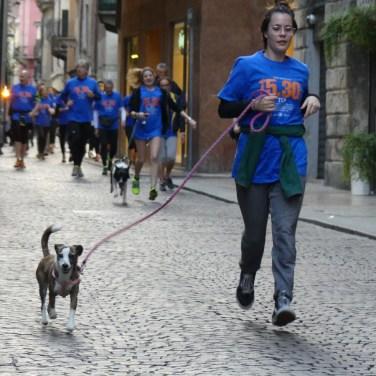 20160513 Run530 Verona corsa Casa disMappa 821