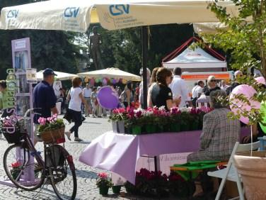 20160925-festa-del-volontariato-verona-dismappa-129