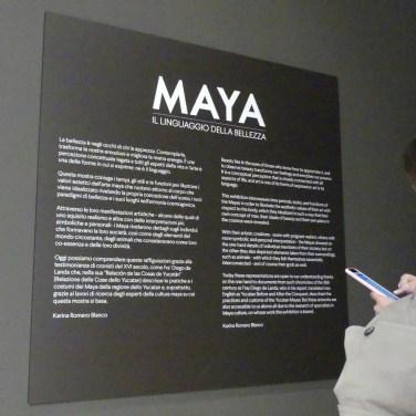 20161007-mostra-maya-verona-dismappa-528