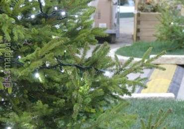 20171116 Accessibilita Mercatino Norimberga Natale Verona dismappa 150