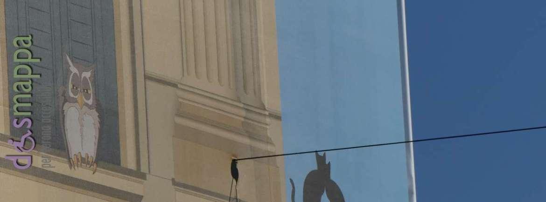 20170126 gufo e gatti palazzo verona dismappa 457