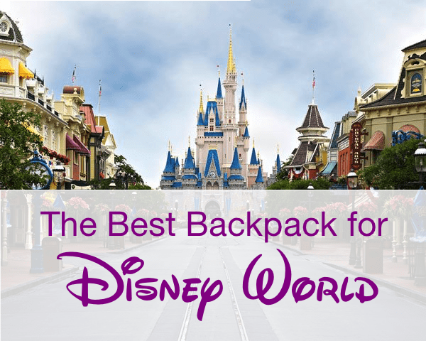 The Best Backpack for Disney World