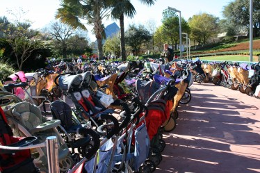 attaching a balloon to your stroller at disney world is one of our best tips