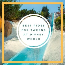Best Rides and Attractions for Tweens at Disney World