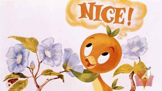 orange bird 001