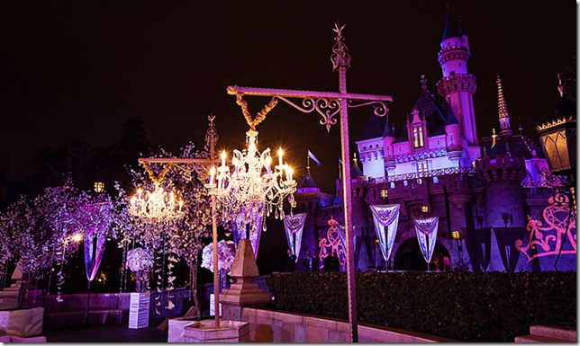 ca_wishes_venues_sleeping_beauty_forecourt_3