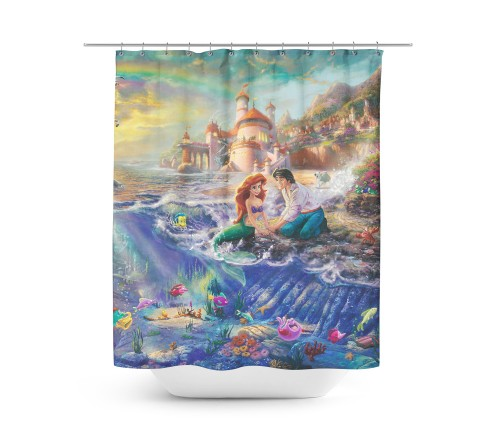 RainbowRules Ariel Shower Curtain