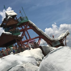 Disney's Blizzard Beach Walt Disney World Resort Disney Water Parks