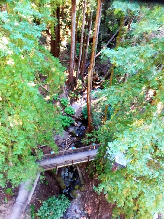 Sonoma Canopy Tours Northern CA Sonoma County ZiplineSonoma Canopy Tours Northern CA Sonoma County Zipline