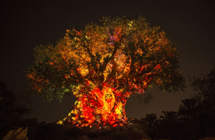 Tree of Life Awakens Disney'