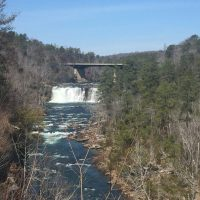 Get Out and Enjoy – Spring is on the Way