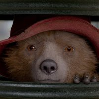 The All New Trailer Is Here For Everyone's Favorite Bear-Paddington And It's As Sweet As Marmalade #Paddington2