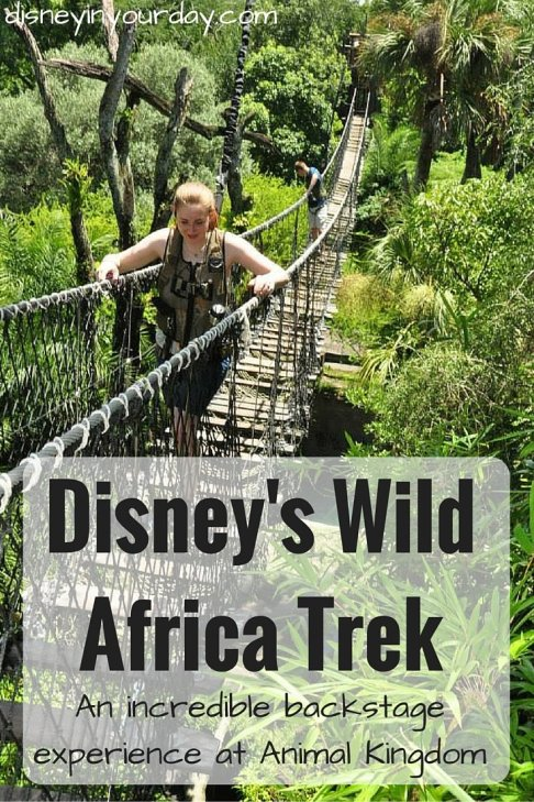 Disney's Wild Africa Trek - Disney in your Day