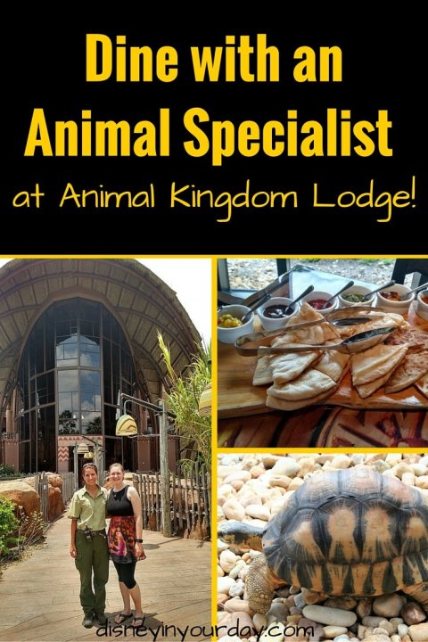 Dine with an Animal Specialist - Disney in your Day