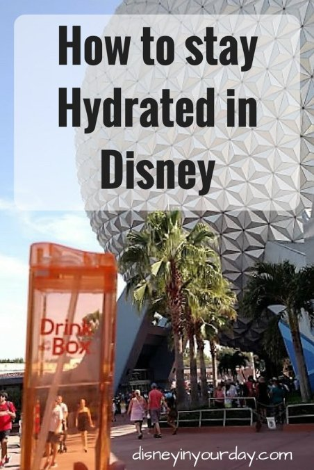 stay hydrated in Disney - Disney in your Day
