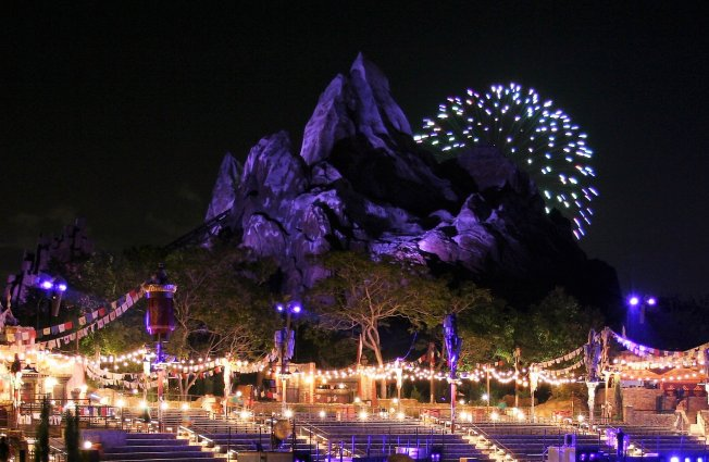Animal Kingdom at night - Disney in your Day
